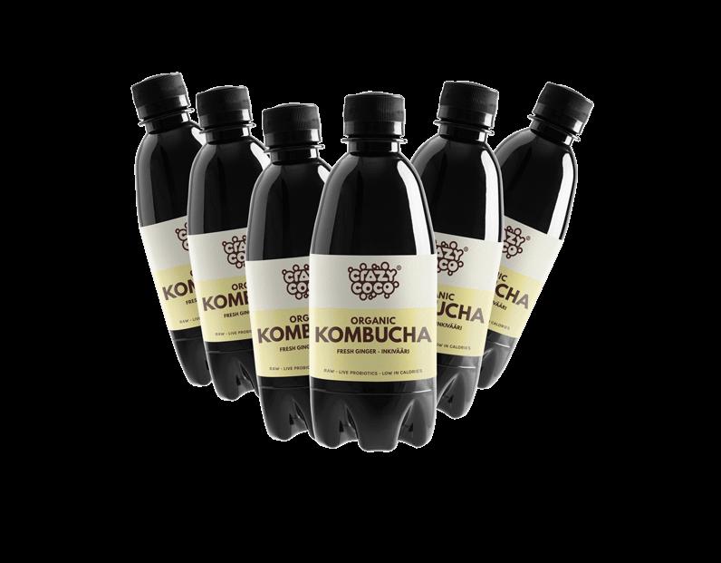 kuusi inkivääri kombucha pulloa